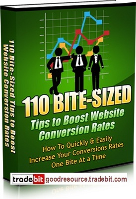 Product picture *New* 110 Bit Sized Tips to Boost Website Conversion Rate