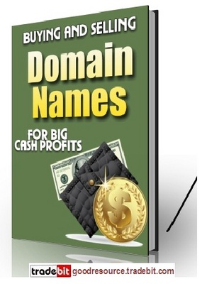 Product picture *New* Buying and Selling Domain Names PLR